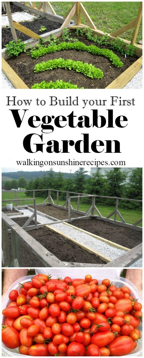 How To Build Your First Vegetable Garden Gardening How To Make A Vegetable Garden In Your Backyard