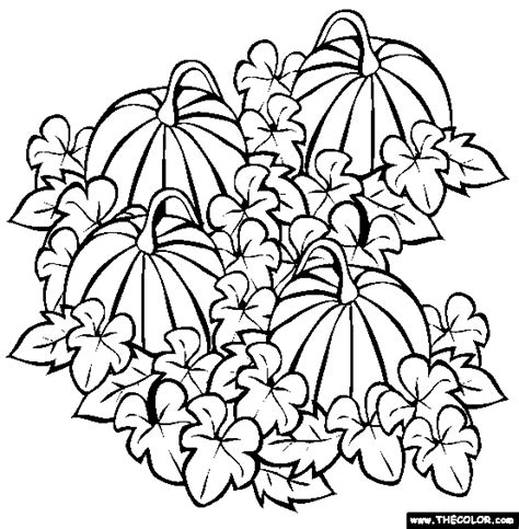 printable coloring pages pumpkin patch pumpkin patch coloring pages clipart panda free
