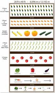 Planning A Vegetable Garden Layout Free Vegetable Garden Layout The Interior Designs
