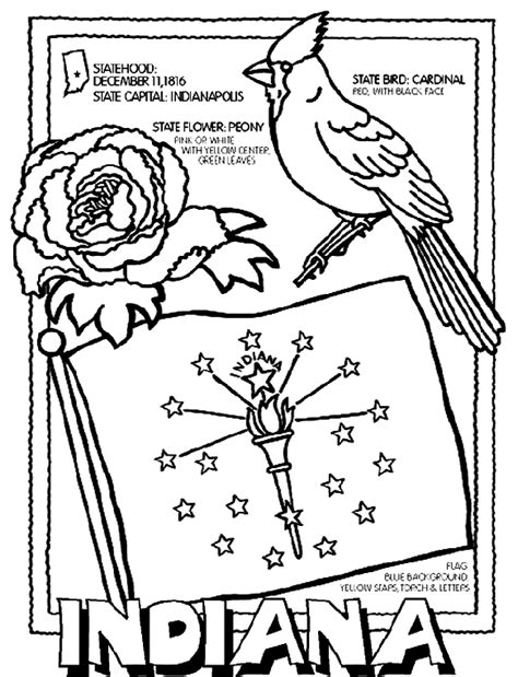 indiana state symbols coloring pages indiana coloring page crayola com