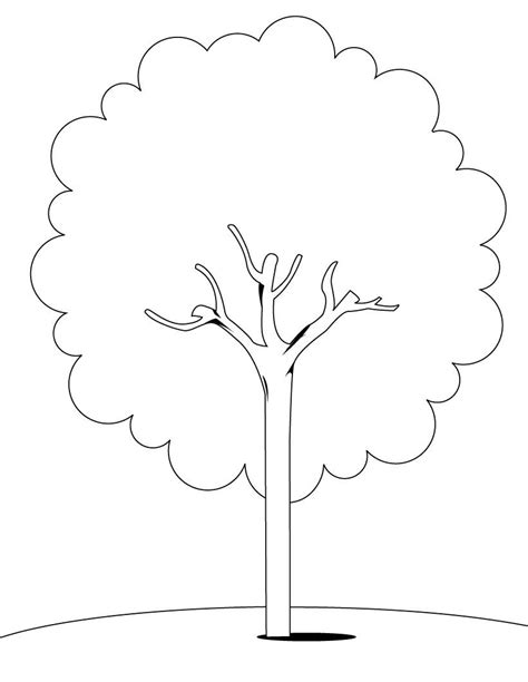 tree to color tree coloring pages coloring pages to print
