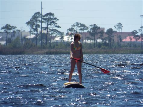 fan boat tours mobile al the top 5 places to paddle on alabama s gulf coast
