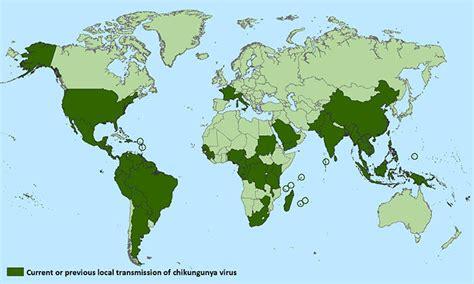 virus mal di testa chikungunya virus sintomi cura e prevenzione farmaco