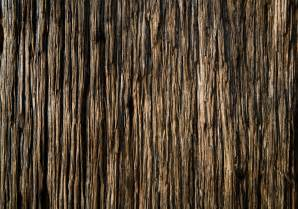 wood texture techcredo wood texture wallpaper collection for android