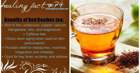 Kebaikan Kinohimitsu Detox Tea by Hidup Sekali Biar Bererti Kebaikan Rooibos Tea Teh Merah
