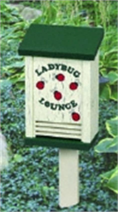Ladybug House Plans Ladybug House Plan Workshop Supply