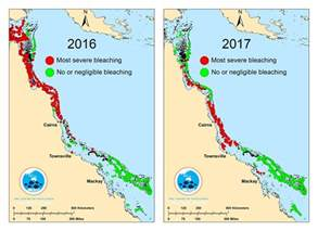 great barrier reef map great barrier reef devastated by severe coral bleaching study nbc news