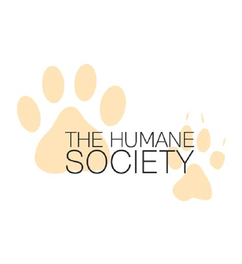 broome county shelter broome county humane society bissell pet foundation