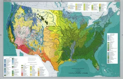 scale map of the united states vegetation map in the national atlas of the united states