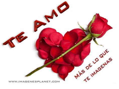 imagenes de rosas te amo te amo frases cortas de amor im 225 genes de amor con