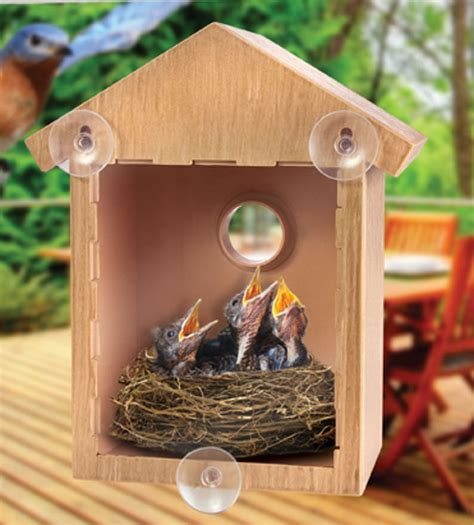 clear window bird feeder house see through nest viewing