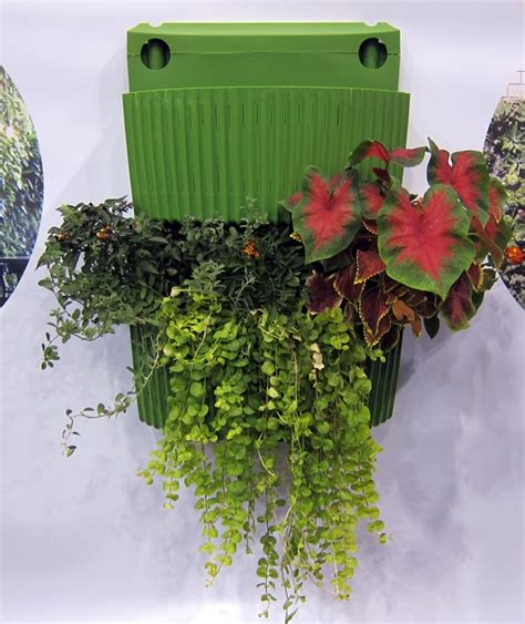 Wooly Pocket Living Wall Planter by Woolly Pockets Introduces New Living Wall Planter Gardens