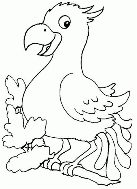 Dibujos de aves para imprimir y pintar