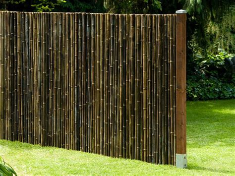 Bambus Garten Dortmund by Ein Dekorativer Sichtschutz Aus Bambus F 252 R Haus Und Garten Aus Echtem Schwarzem Bambusrohr