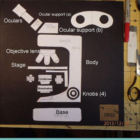 How To Make A Microscope Out Of Paper - make a cardboard binocular microscope do it yourself