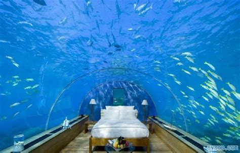 underwater bedroom in maldives cool picture underwater bedroom funny videos and