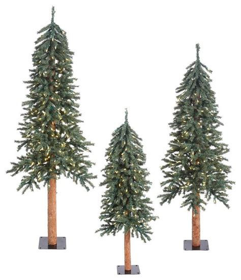 set of 3 alpine trees 3 bark alpine set 500 clear mini lights