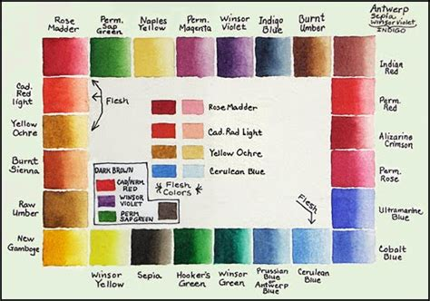 mara mattia watercolor materials