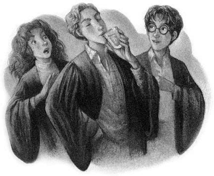Hp Lexicon Essays by Hbp14 The Harry Potter Lexicon