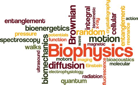a mathematical approach to protein biophysics biological and physics biomedical engineering books what 箘s b箘ophys箘cs biophysics
