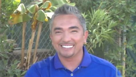 cesar the whisperer the whisperer cesar millan photo 18926198 fanpop