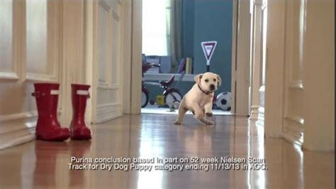 puppy chow commercial purina puppy chow tv commercial who can resist ispot tv