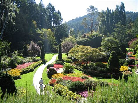 pictures of a garden butchart gardens