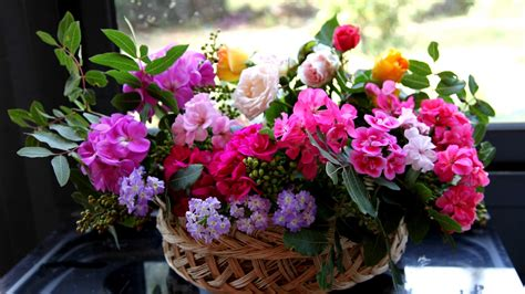flower shops near me flower shops near me wallpaper