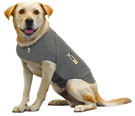 calming meds for dogs thundershirt calming coat for dogs with anxiety
