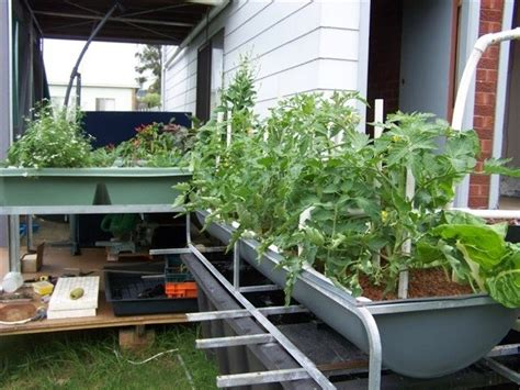 Aquaponics Backyard by Decorative Aquaponics