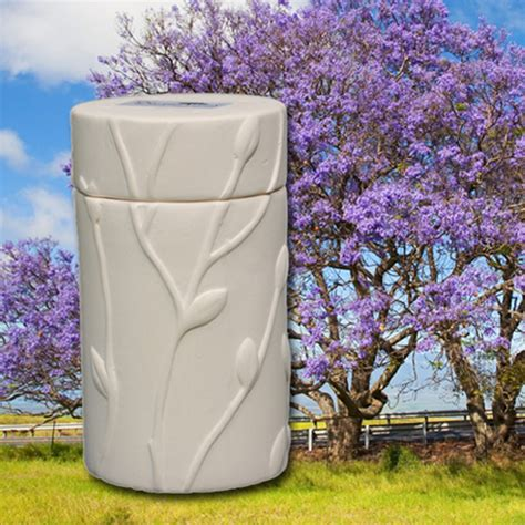 Cremation Tree Planter by Eternitrees Biodegradable Memorial Tree Cremation Urn