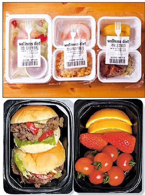 living on healthy low cal lunch boxes