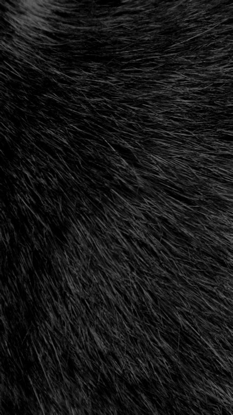 hairby minklittle download black fluffy fur 1080 x 1920 wallpapers 4733560