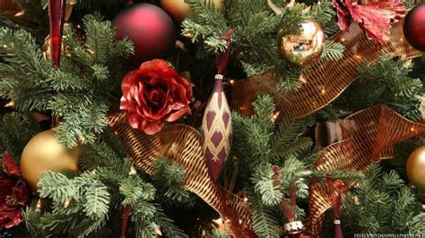 close up christmas tree wallpaper