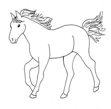 image gallery horse drawings to colour horse drawing step by step