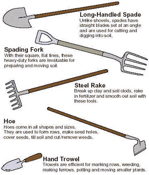 gardening tools gardening tools basic gardening tools of the beginner