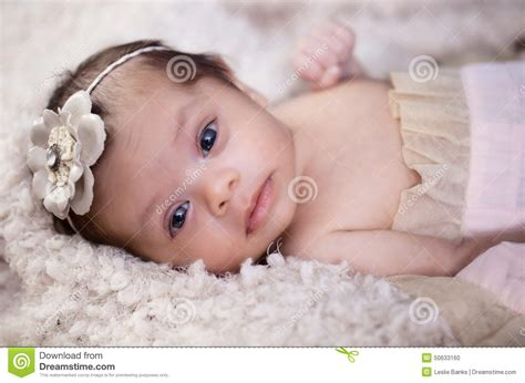 mixed baby girl names newborn baby girl portrait stock photo image 50633160