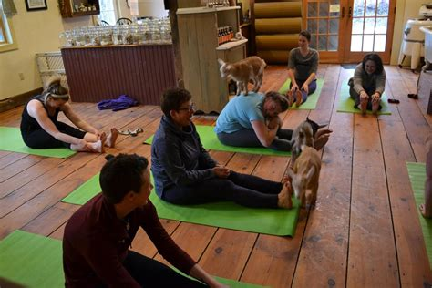 people    surprisingly good time  yoga