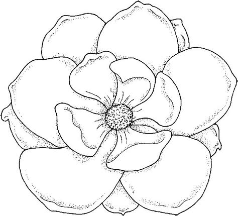 coloring pages of flowers with names best 25 flower coloring pages ideas on