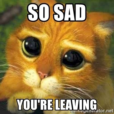 So Sad Meme - so sad you re leaving shrek cat 2 meme generator