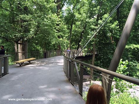 Atlanta Botanical Gardens Canopy Walk Kendeda Canopy Walk Atlanta Botanical Garden