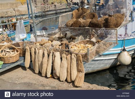 fishing boat for sale europe fishing boat in chania harbour crete greece europe