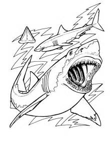 shark coloring book free printable shark coloring pages for