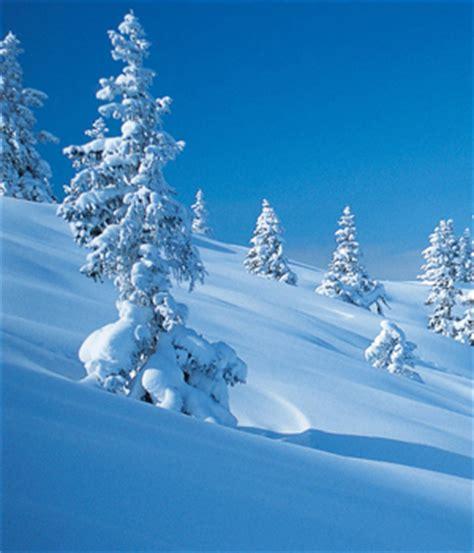 imagenes solsticio invierno preciosas im 225 genes de invierno taringa