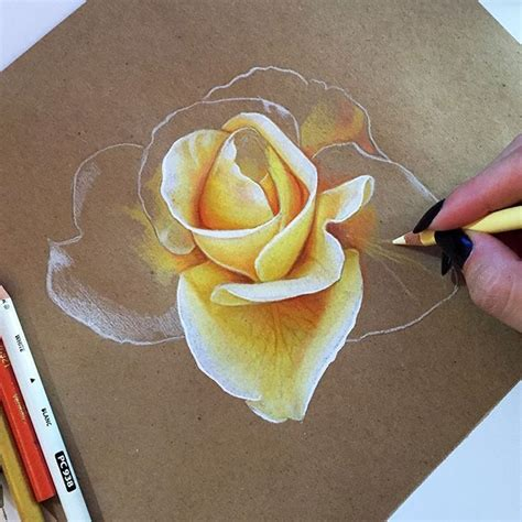 libro flowers in colored pencil 25 best ideas about 3d pencil drawings on pencil art 3d pencil sketches and panda art