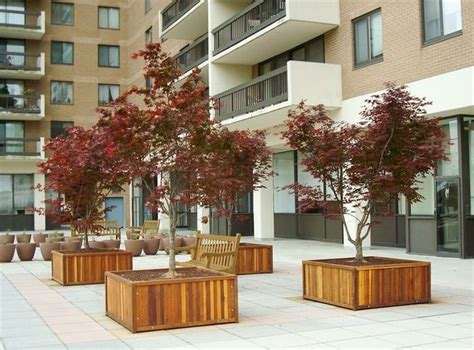 planters for trees 33 best images about wood planter tree box on