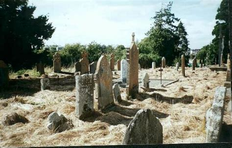 County Carlow Ireland Birth Records Mullawn Cemetery County Carlow Ireland