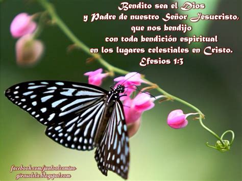 georgina petrushinova youtube imagenes biblicas con textos biblicos auto design tech