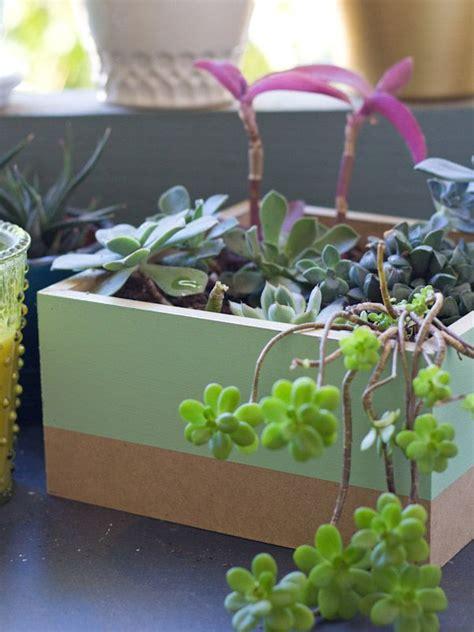 succulent planter box diy painted succulent planter box diy crafts pinterest