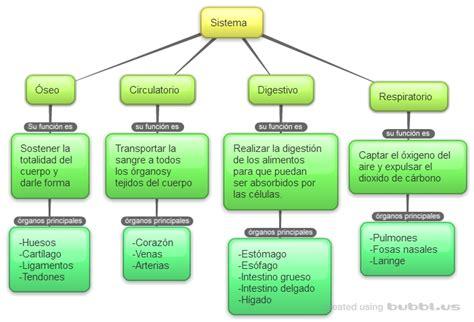 imagenes mapa mental del cuerpo humano los sistemas del cuerpo humano mapa conceptual de los